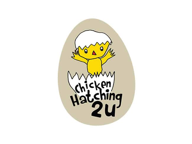 Logo Design South Coast NSW | Chicken Hatching 2 U